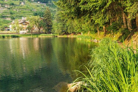 Lago di Canzolino - Bild von Ristorante Pizzeria Sapori D\'Abruzzo ...