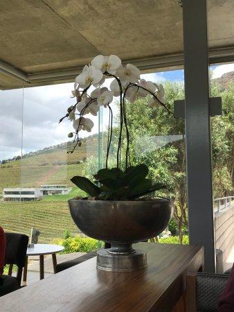 Constantia, Sudáfrica: photo2.jpg