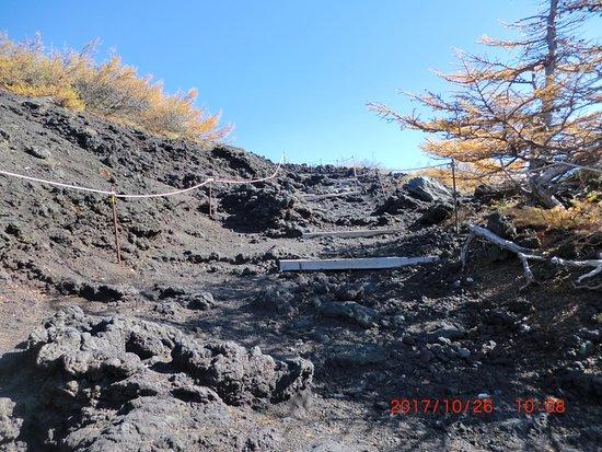 Fujinomiya Route
