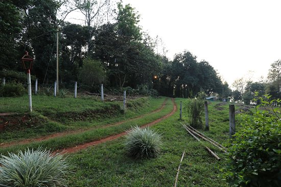 Hilly Side Home Stay : route leading to the house