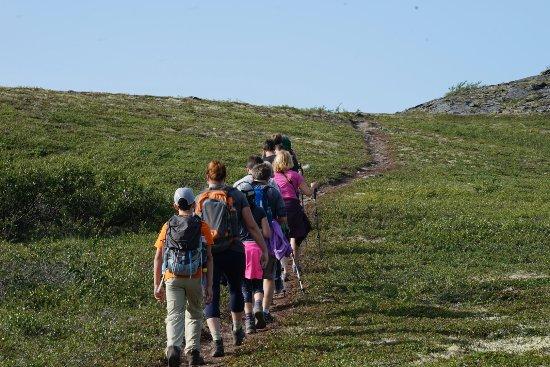 Trapper Creek, AK: hiking up to the ridge