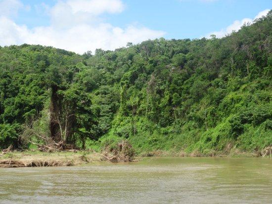 Bayahibe, Dominican Republic: Jungle Tour