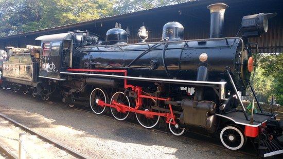 Passeio de Maria Fumaca Campinas - Jaguariuna : Trem