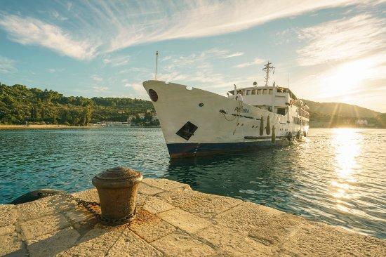 Kolocep Island, Kroatia: Ferry to Dubrovnik