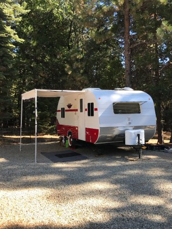 Shingletown, CA: Perfect campsite