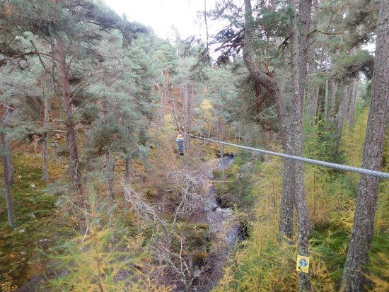 Aviemore, UK: Zipping through the trees!