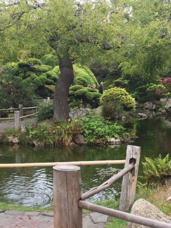 Japanese tea garden san francisco ca reviews top - Japanese tea garden san francisco ...