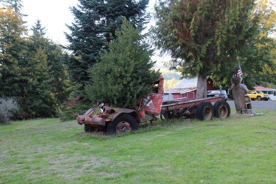 Toutle, Вашингтон: Tree-in-a-Truck