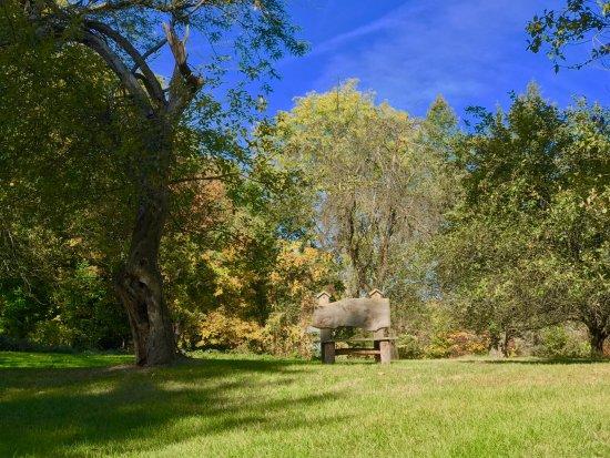 Penn Yan, Nowy Jork: Grounds around Estate
