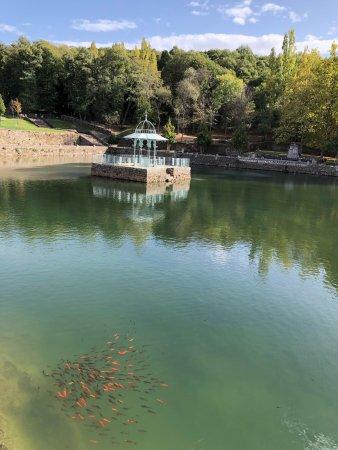 Villa El Bosque: photo0.jpg