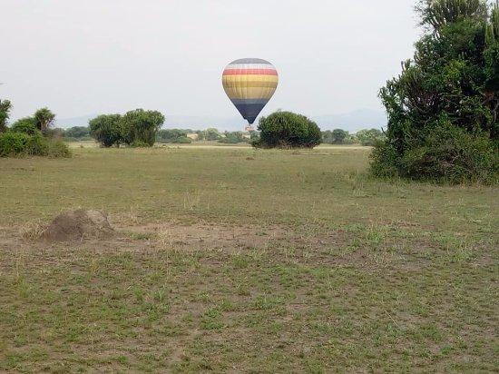 Yala Safaris Uganda