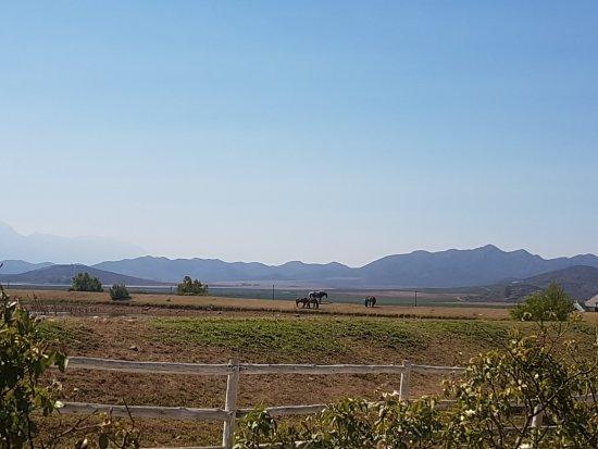 Robertson, جنوب أفريقيا: View from the Manor House