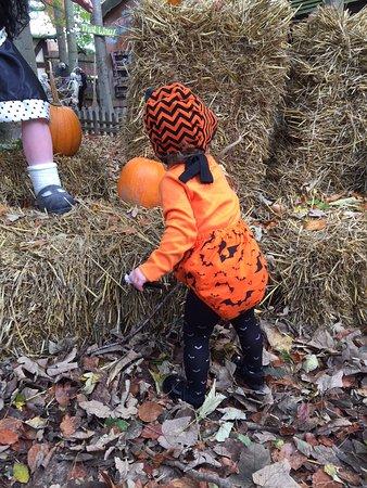 Wonderland: Halloween event