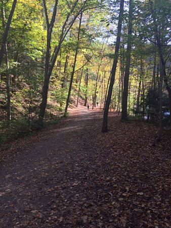 Trumansburg, Estado de Nueva York: A look at the trail - solitude and beauty