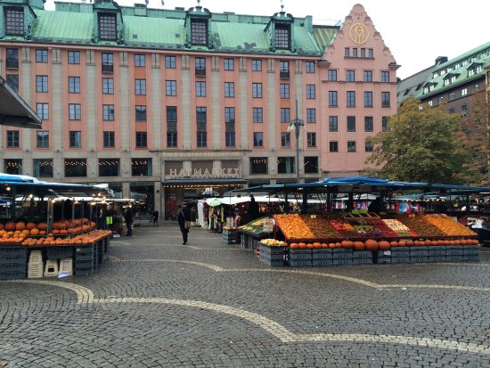 Free Tour Stockholm: Outdoor market with lovely fresh mushrooms