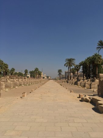 Avenue of Sphinxes: photo0.jpg