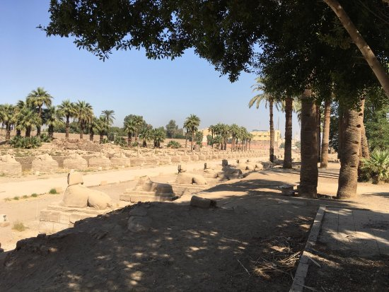 Avenue of Sphinxes: photo1.jpg
