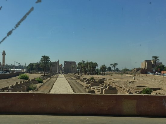 Avenue of Sphinxes: photo4.jpg