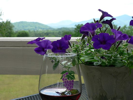 Washington, Wirginia: Wine with a View