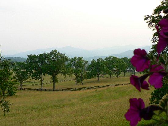 Washington, VA: The View