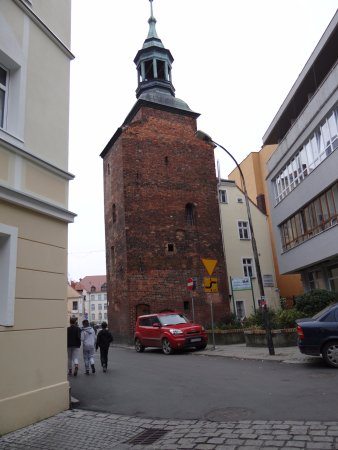 Wieza Glodowa: Wieża głodowa
