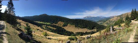 Plav, Черногория: photo8.jpg