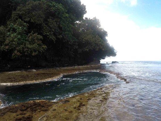 Teahupoo Tahiti Surfari - Day Tours: Piscine naturelle