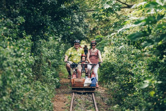 Sigatoka, Fiji: Feel the rythm of the rails as you cruise along through shady forests