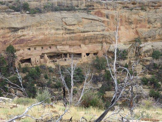 Nordenskiold  #16 Trail