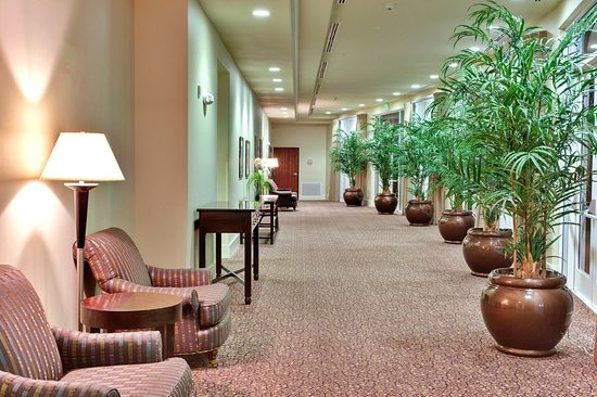 Holiday Inn Yuma: Hallway