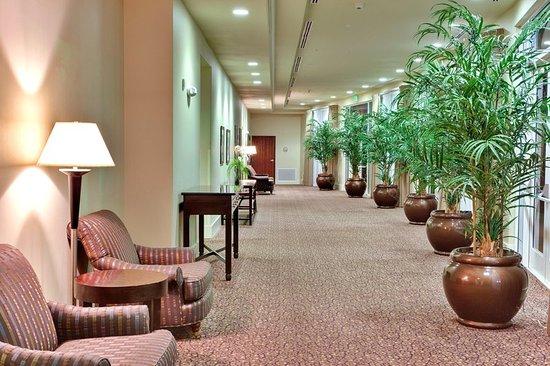 Holiday Inn Yuma照片