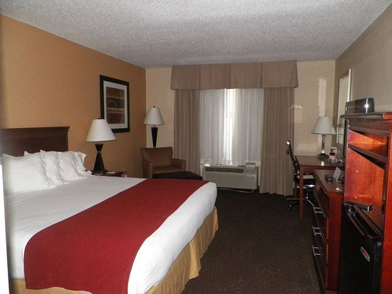 Holiday Inn Express Ste Forest: King Bed Guest Room