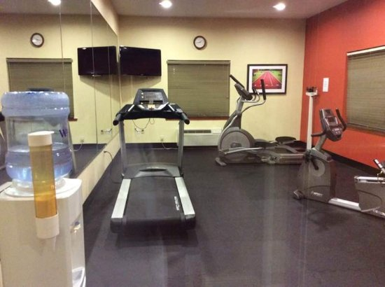 Holiday Inn Express Ste Forest: Fitness Center