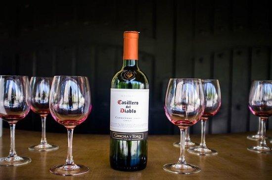 Excursão na vinícola Concha y Toro...