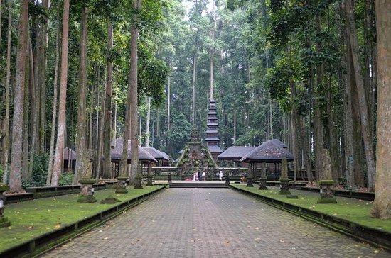 Excursión privada de 2 días a Bali...