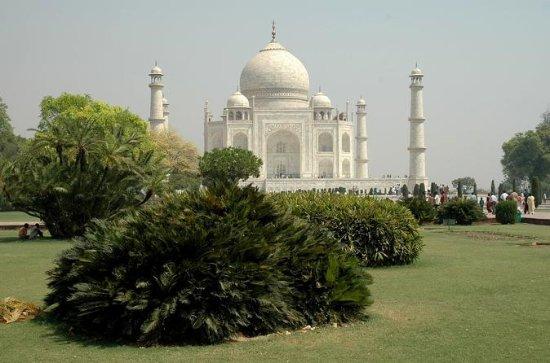 Agra Tour d'une nuit