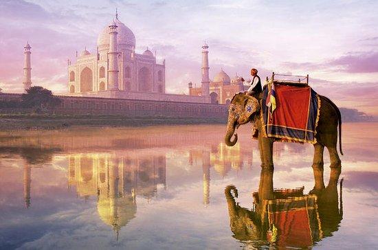 Agra Same Day Tour van Jaipur met ...