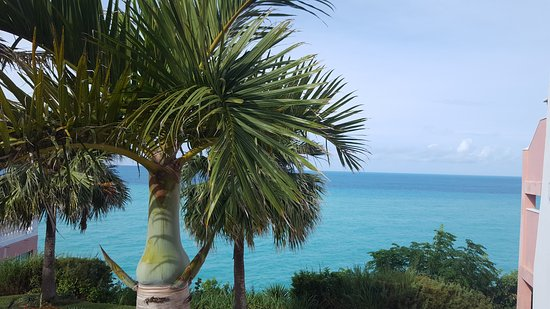 Pompano Beach Club foto