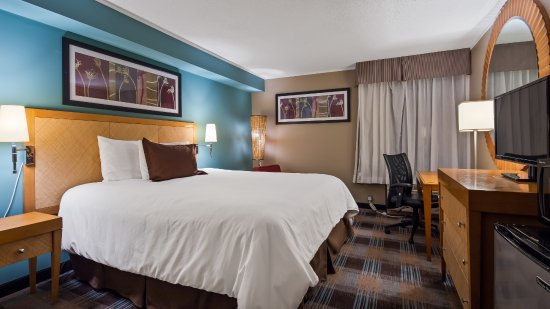 Surestay Plus Hotel By Best Western Jasper  91    U03361 U03361 U03366 U0336  - Updated 2018 Prices  U0026 Reviews