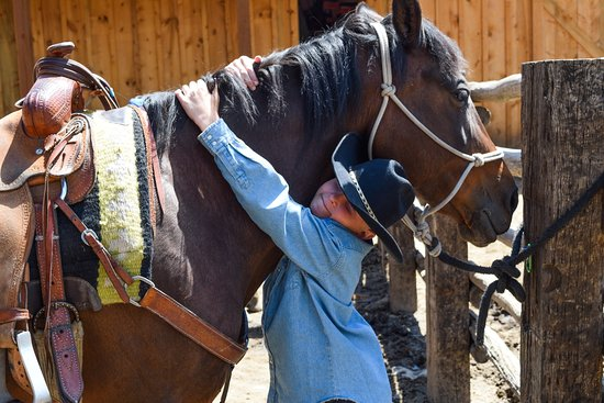 Livermore, CO: Nothing like the bond between a boy and his horse