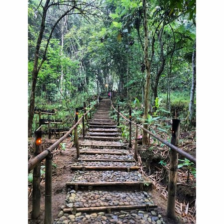 Barede Hill: walking path