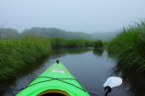 แซนวิช, แมสซาชูเซตส์: Scorton Creek (overcast morning) 8-19-2017