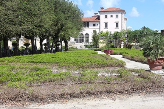 Brown grass in garden - Picture of Vizcaya Museum and Gardens, Miami ...
