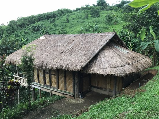 Bamboo Nest de Chiang Rai: Our bamboo hut, with Nok's dog sleeping on the roof.
