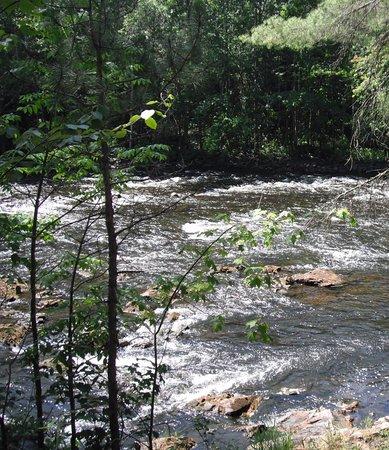Samuel de Champlain Provincial Park: river between campsites - fishing and tubing