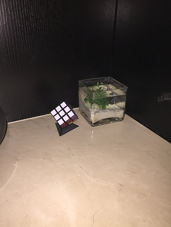 Crystal Orange Hotel Beijing Jianguomen: The two best things about my room. The Rubiks cube and the poor fish.