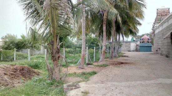 Arakkonam, Indie: Gardens of the temple
