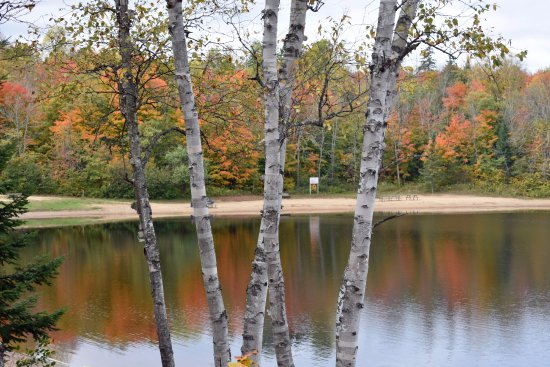 Arrowhead Provincial Park: Arrowhead Lake - Lumby Beach