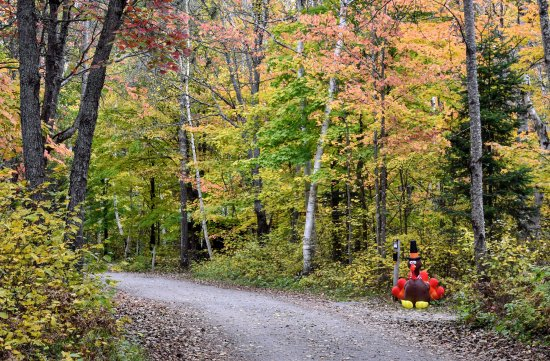Arrowhead Provincial Park: Thanksgiving camping