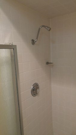 "Tiki Lodge Motel: Great shower head ""Firehose"" quantity"